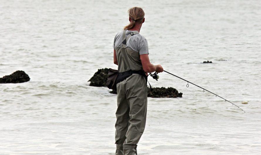 Quels sont les bienfaits de la pêche ?